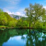 Landscape with lake Stock Image