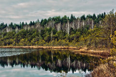 Landscape. A landscape of a lake at autumn royalty free stock photography