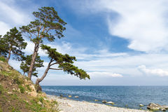 Landscape at Lake Baikal Royalty Free Stock Photo