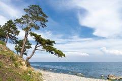 Landscape at Lake Baikal Royalty Free Stock Photo