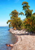 Landscape at Lake Balaton in autumn Stock Image