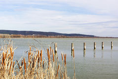 Landscape of Lake Balaton Royalty Free Stock Photography