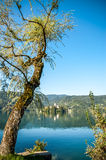 Landscape of Lake Bled Royalty Free Stock Photography