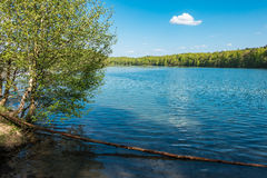 Landscape on a lake with blue sky Royalty Free Stock Photos