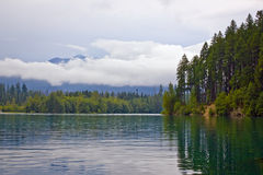 Landscape with  lake and evergreen forest Royalty Free Stock Images