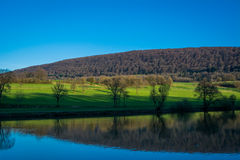 Landscape with lake, field and forest Royalty Free Stock Photo