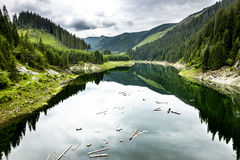 Landscape with lake Galbenu in Romania Stock Images