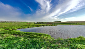 Landscape with lake and green summer meadow Royalty Free Stock Images
