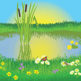 Landscape with lake and meadow Stock Photography