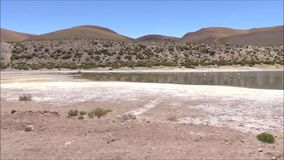 Landscape of lake and mountains in Atacama desert Chile. Landscape of lake, river and mountains in Atacama desert Chile stock footage