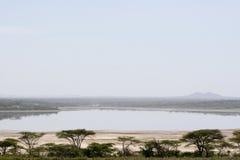 Landscape of Lake Ndutu Royalty Free Stock Photo