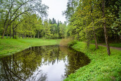 Landscape with lake. Pavlovsk Park. Pavlovsk Park, city of Pavlovsk. The kings Park. Landscape is idyllic. The forest and the lake in loue, Park. Summer day in Royalty Free Stock Image