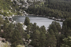 Landscape with lake and pine forest in Spain. Laguna Negra Stock Photography