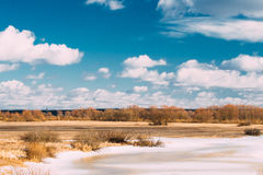 Landscape with Lake Pond or River At Late Winter Or Early Spring Royalty Free Stock Image