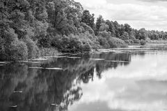 Landscape of the lake or river in monochrome tone Stock Photos