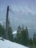 Landscape of Lake Tahoe Stock Image