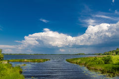 Landscape with a lake. Royalty Free Stock Photography