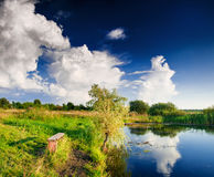 Landscape with lake and tree. Summer landscape with lake and tree, cloudy sky Royalty Free Stock Photos
