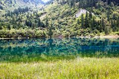 Landscape of lake and trees Stock Photography