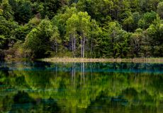 Landscape of lake and trees Royalty Free Stock Photo
