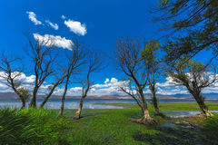 Landscape of lake and village Royalty Free Stock Image