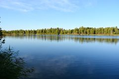 Landscape with a lake, where the forest reflects in water. Beautiful summer scene stock photo