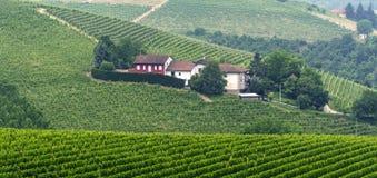 Landscape in Langhe (Piedmont) Stock Image