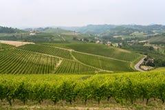 Landscape in Langhe (Piedmont) Stock Photos