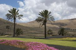 Landscape of Lanzarote. Wonderful colorful landscape of Lanzarote not far from the little town Yaiza Stock Images