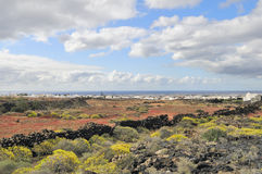 Landscape of Lanzarote Island. Volcanic landscape of Lanzarote Island Royalty Free Stock Photos