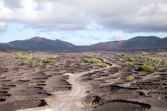 Landscape of Lanzarote Stock Photo