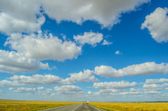 Landscape with the large sky with clouds and rod in the middle of the yellow fields. Wheat field and the road in the prairies of Kalmykiya Stock Photos