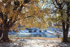Landscape late autumn. Sun freezing river park royalty free stock photos