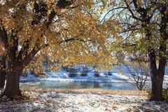Landscape late autumn Royalty Free Stock Photos