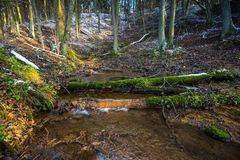 Landscape of late autumnal forest with first snow and small river Royalty Free Stock Photo