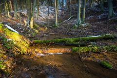Landscape of late autumnal forest with first snow and small river Stock Photo