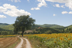 Landscape between Lazio and Umbria Stock Images