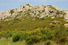Landscape of Les Alpilles in Provence Stock Photography