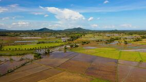 Landscape on Leyte Island, Philippines. Rice fields, top view. Agriculture concept.