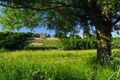 Landscape Lingnerschloss, Dresden Stock Photo