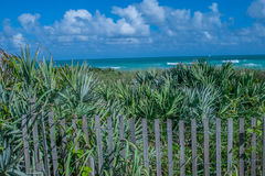 Landscape3 litoral Foto de Stock