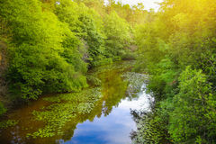 Landscape with little river Stock Photo