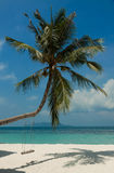 Landscape of little tropical island, white beach with nice swing and perfect sky. Landscape of tropical island with a beautiful white beach and perfect sky Stock Photography