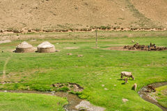 Landscape with local farm, cows and Central Asian tents yurts in narrow river green valley. Village of Kyrgyzstan Royalty Free Stock Image