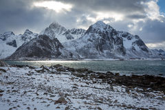 Landscape in Lofoten, Norway Royalty Free Stock Images