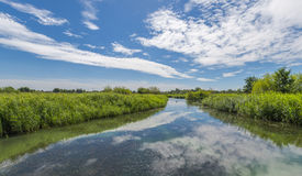Landscape of London Wetlands Center nature reserve Stock Images