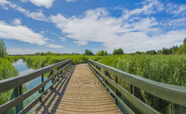 Landscape of London Wetlands Center nature reserve Stock Photography