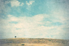 Landscape with lone tree. Vintage style landscape with lone tree and huge sky Royalty Free Stock Photo