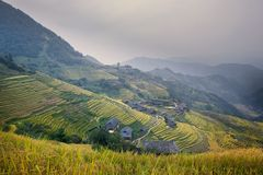 Landscape of Longsheng rice terraces Royalty Free Stock Image