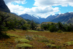 Landscape in Los Glaciares national park. Beautifull landscape in Los Glaciares national park (laguna Capri trail). El Chalten, Patagonia, Argentina, South Royalty Free Stock Images